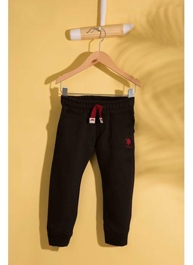 U.S.Polo Assn. Pantolon Siyah
